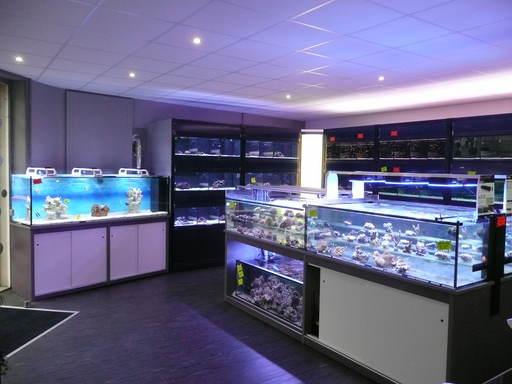 L 39 aquarium tropical vente en ligne de mat riel et d - Vente materiel bricolage en ligne ...