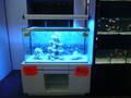Aquarium avec meuble OSAKA 320l