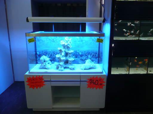 l 39 aquarium tropical vente en ligne de mat riel et d. Black Bedroom Furniture Sets. Home Design Ideas