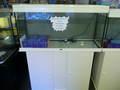 Aquarium avec meuble ELEGANCE 213l